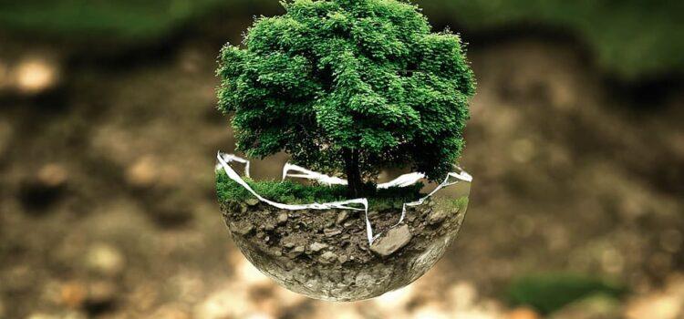Contributo a fondo perduto per progettazione e caratterizzazione di operazioni di bonifica e ripristino ambientale di siti inquinati